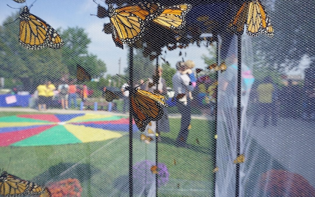 El Valor 2019 Monarch Butterfly Release