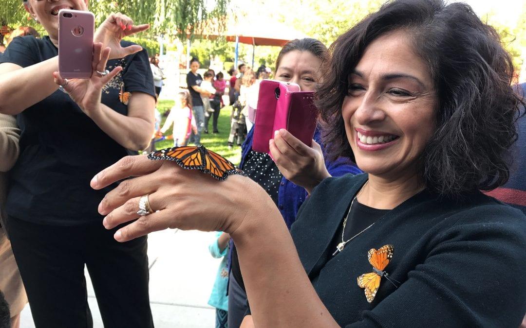 2017 Monarch Butterfly Release