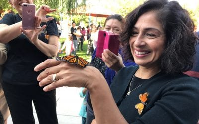 2017 Monarch Butterfly Release